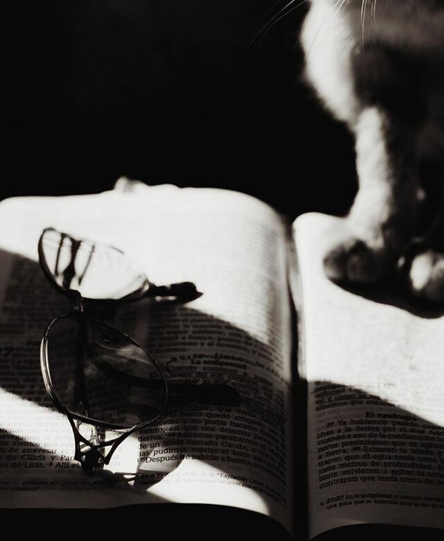 Animal et littérature