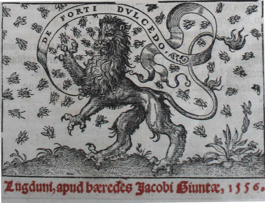 Livres anciens - Illustration éditions lyonnaises du 16e siècle