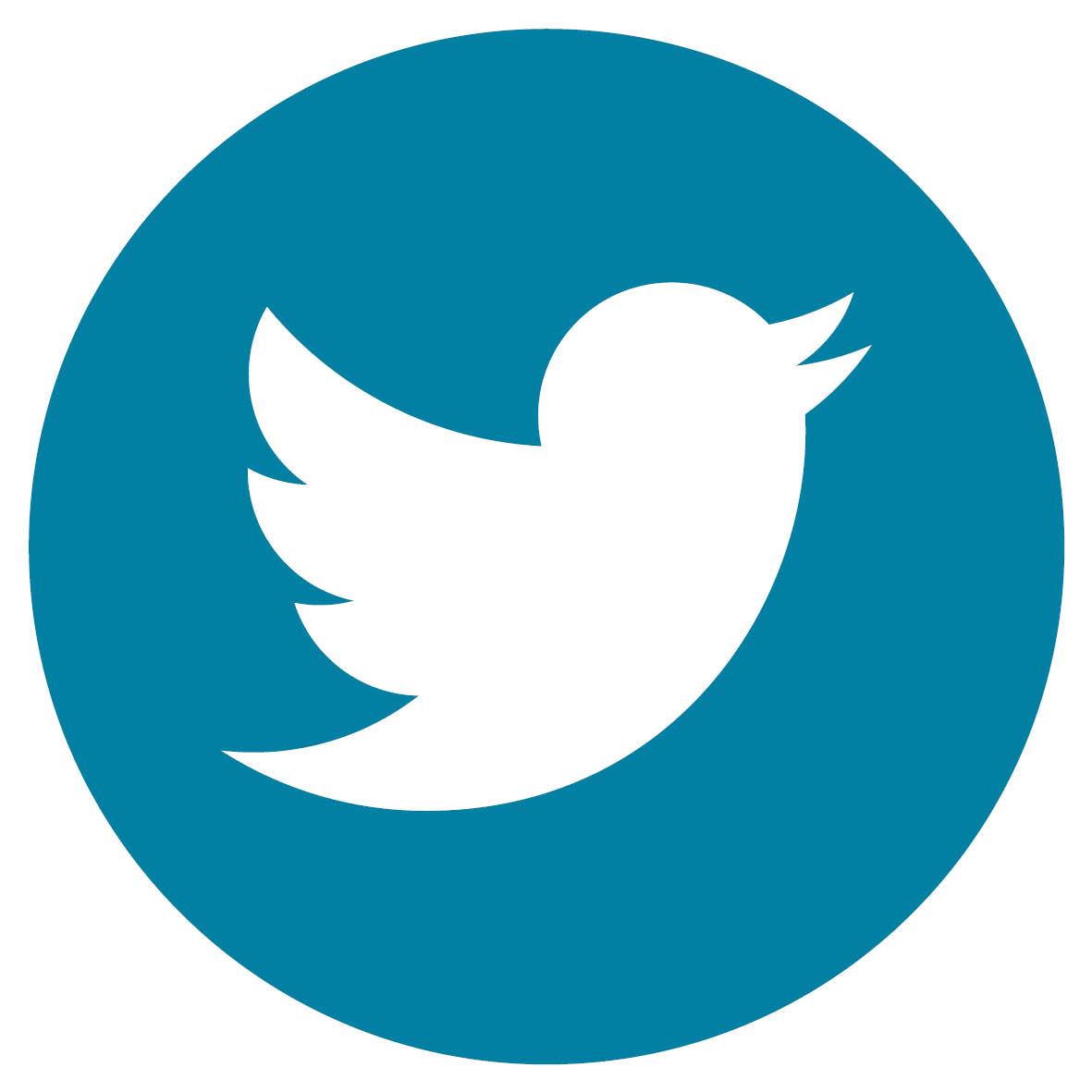 logo twitter ucly expert