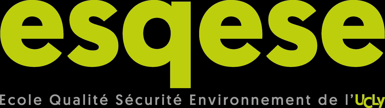 Logo ESQESE