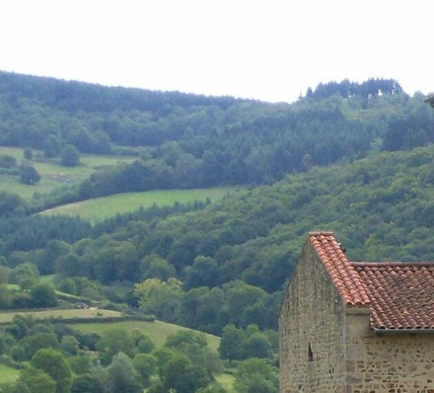 paysage du lyonnais