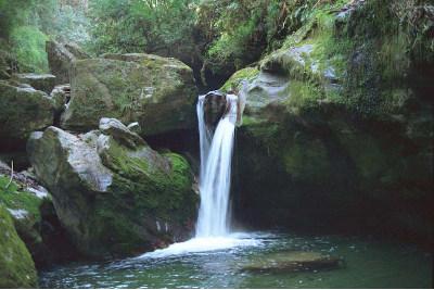 nature, cascade, sérénité