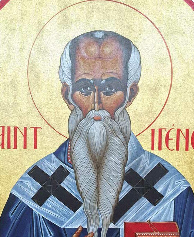 L'Eglise, un corps organique saint Irénée | Faculté Théologie UCLy